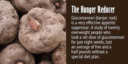 Glucomannan is a water-soluble fibre sourced from the roots of the konjac plant